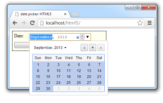 form-input-type-date-time-type-html5-technotip